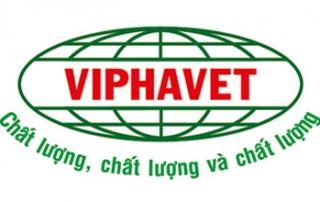 Công ty TNHH Việt Pháp Quốc tế 6