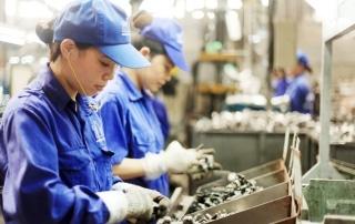 Bổ sung chính sách thúc đẩy phụ nữ tham gia thị trường lao động